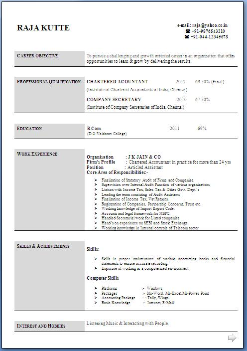 Chartered Accountant Professional Resume