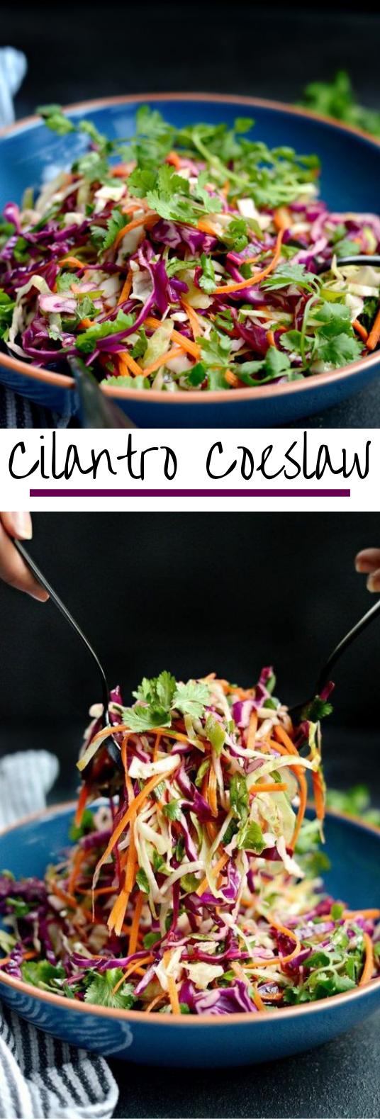 Cilantro Coleslaw #vegetarian #sidedish