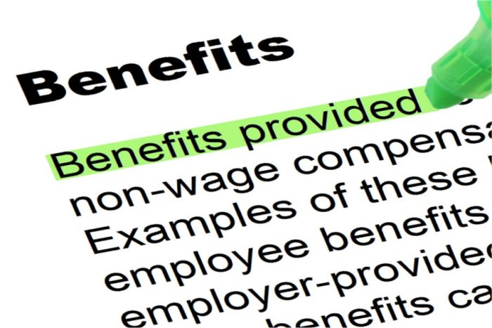 फ्रिन्ज बेनिफिट टैक्स क्या है ? उसकी विशेषताएं बताये उधारण सहित |  [What is FBT(Fringe Benefit Tax) ? Its importance explain with example.]