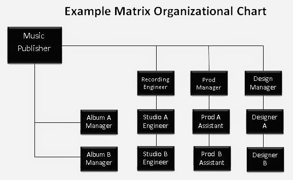 Project ManagementOrganizational Culture, Structure and Strategy