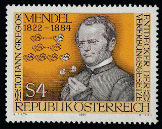 Austria Gregor Mendel, Basic Laws of Heredity