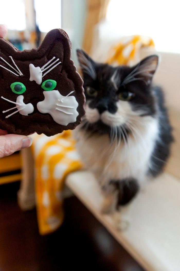 customized cat cookie cutters