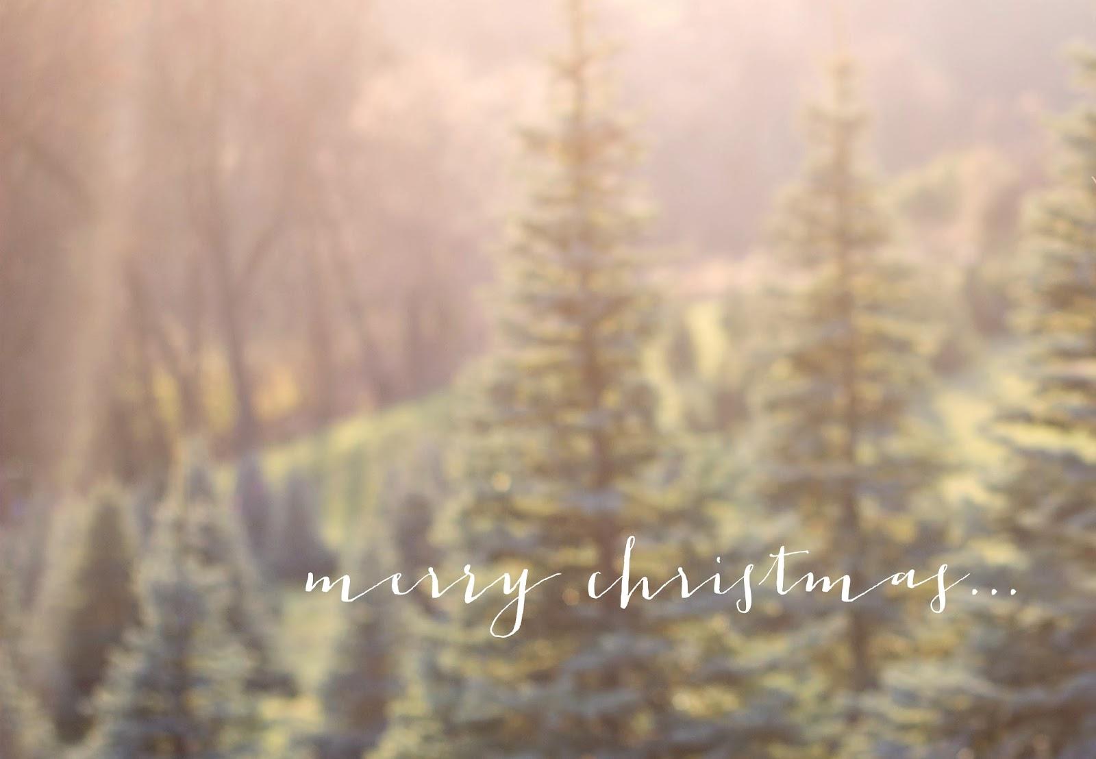 A Cozy Christmas | Kaelyn Romine