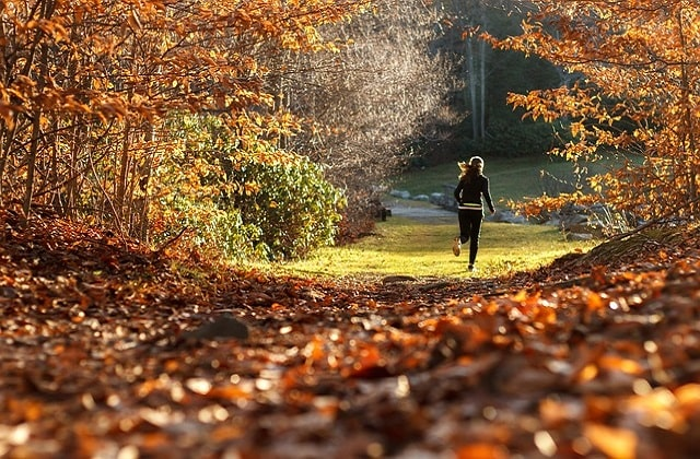 Fall Into Fitness 4 Great Ways To Stay Motivated