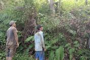Babinsa Bersama Warga Binaan Patroli Karhutlah Di Wilayah Desa Binaaan