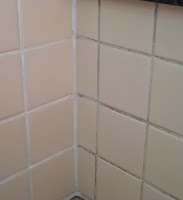 Before and after image of grout in my shower