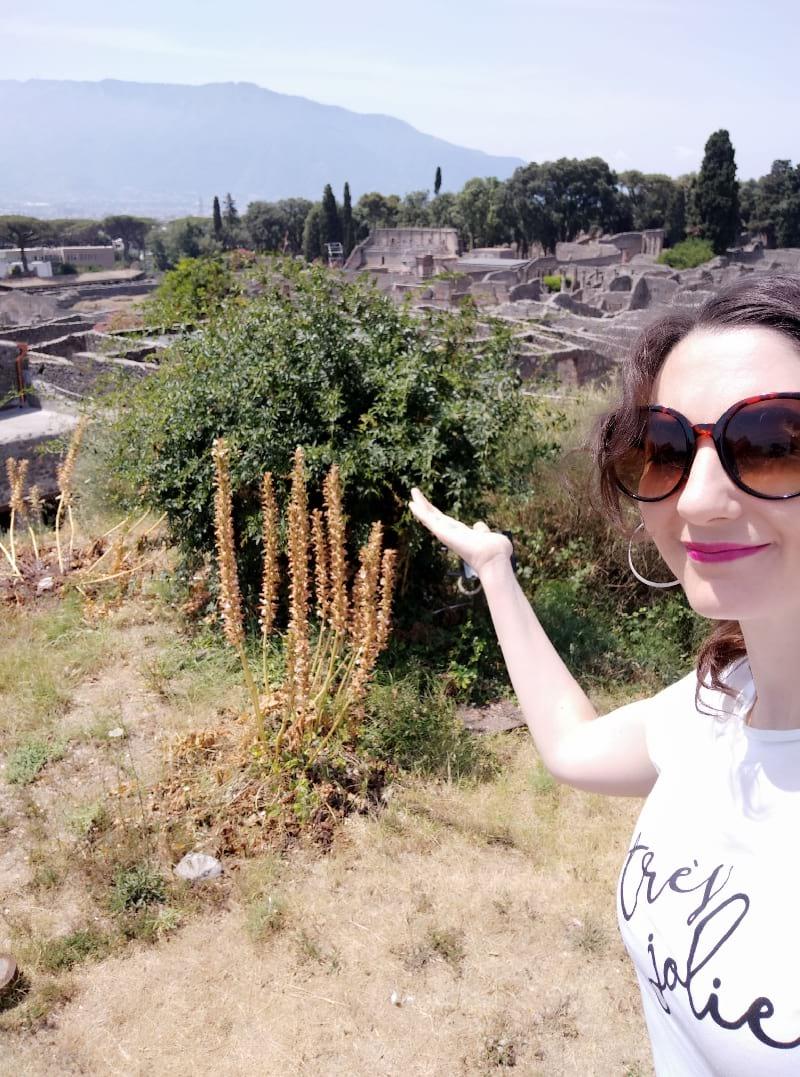 pompeya pompeii ruins ruinas de pompeya tips