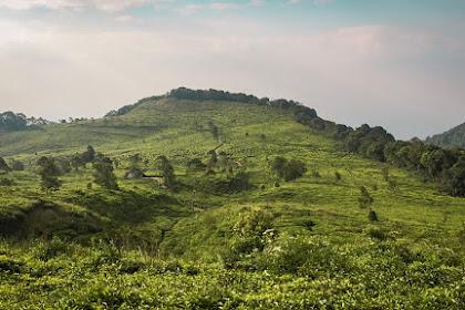 Pendakian Gunung Ungaran via Mawar (Edisi Badai Angin)
