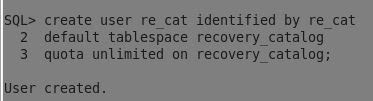 Recovery Catalog User