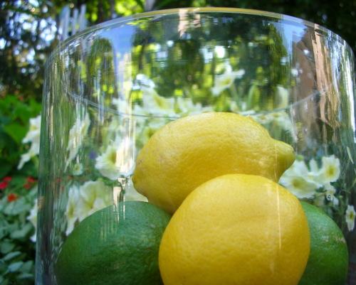 Lemons for Lemon Pudding Cake ♥ KitchenParade.com