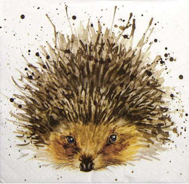 National Hedgehog Day Wishes pics free download