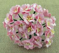 http://scrapkowo.pl/shop,kwiaty-jabloni-rozowe-5szt,4804.html