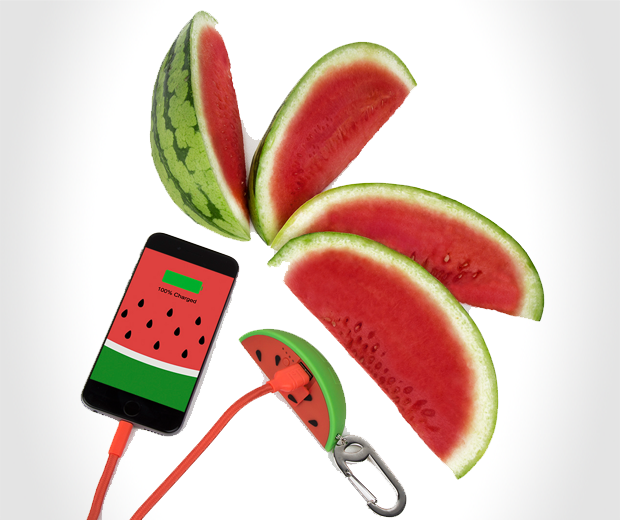 Watermelon Power Bank