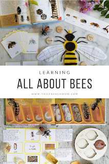 Learning all about bees with hands on activities for preschoolers
