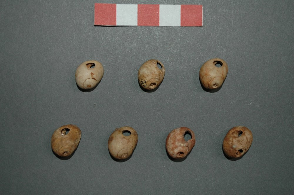 Magdalenian ornaments from Isturitz cave (Spain)