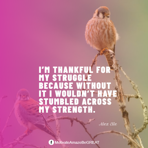 "Inspirational Quotes About Life And Struggles: ""I'm thankful for my struggle because without it I wouldn't have stumbled across my strength."" - Alex Elle"
