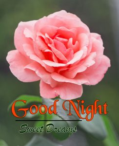 Beautiful Good Night 4k Images For Whatsapp Download 89