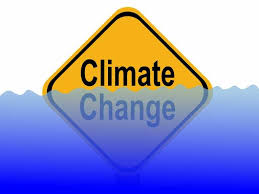 Abrupt and Irreversible Changes Expected in Future