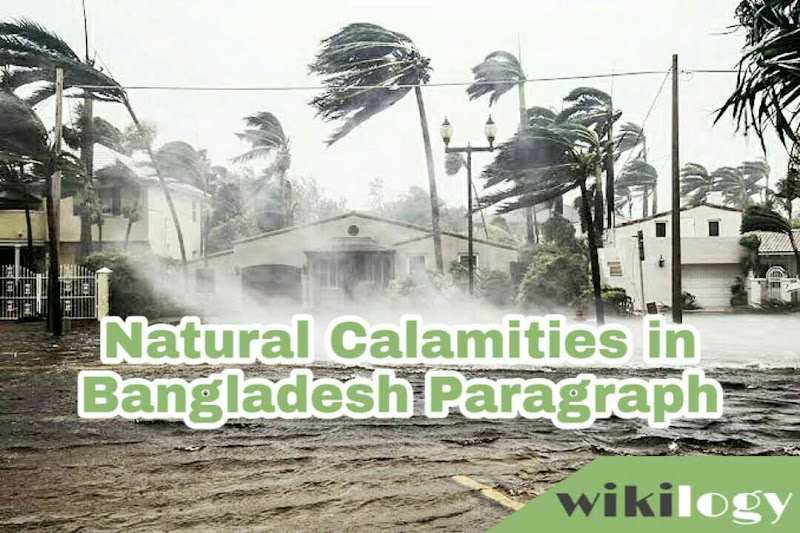 Natural Calamities in Bangladesh Paragraph