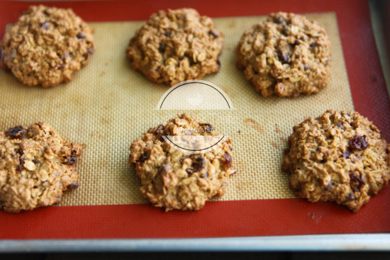 Gluten Free Oatmeal Cookies (Tanpa Tepung) JTT