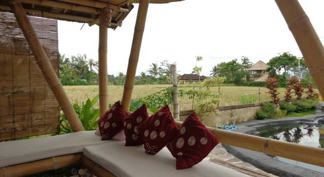 Laksmi Ecottages Ubud Bali, Penginapan Nyaman Dan Harga Murah