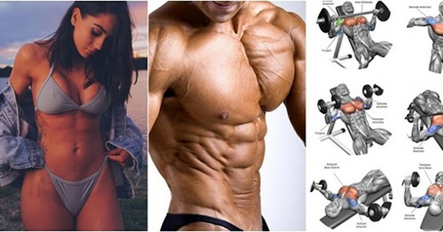 Exercises That Target Your Upper Body