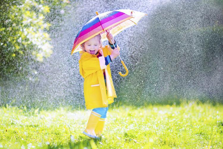 musim hujan - dokpedia
