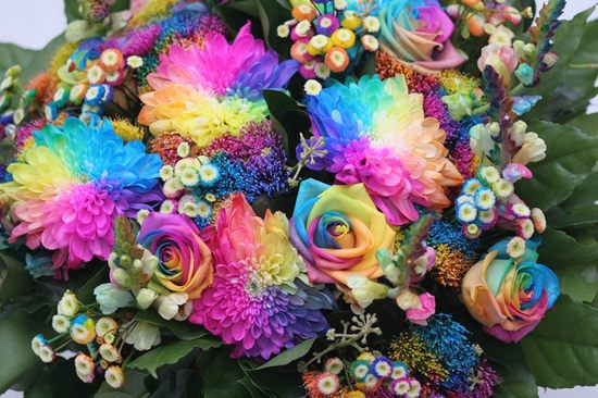 Rainbow Flowers Sawpedia