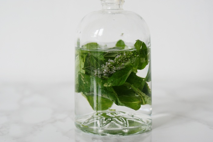 mint water spray skin diy