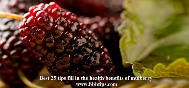 Best 25 tips fill the health benefits of mulberry