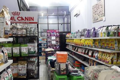 Pet shop murah kota Medan