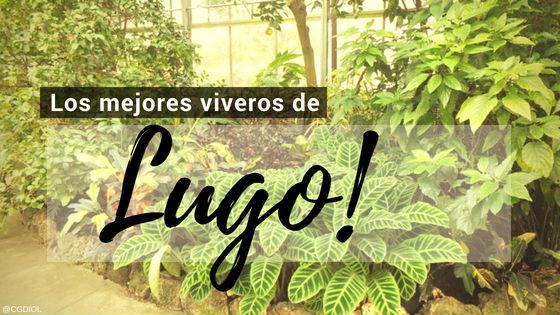 comprar plantas online Lugo