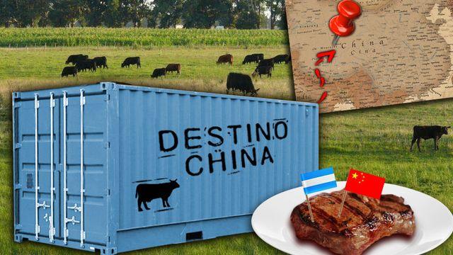 La Argentina será el principal proveedor de carne a China, que habilitó exportaciones a más frigoríficos
