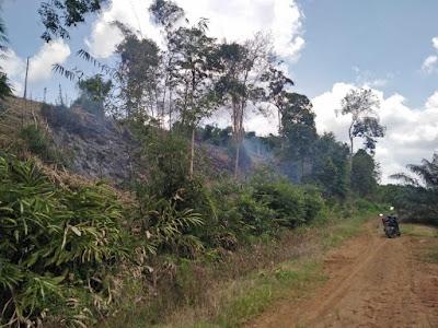 Satreskrim Polres Tanjabtim Tindak Tegas Pelaku Pembakaran Lahan Di Wilayah Hukum Polres Tanjabtim