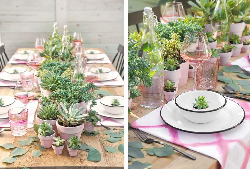 decorare la tavola con le piante grasse