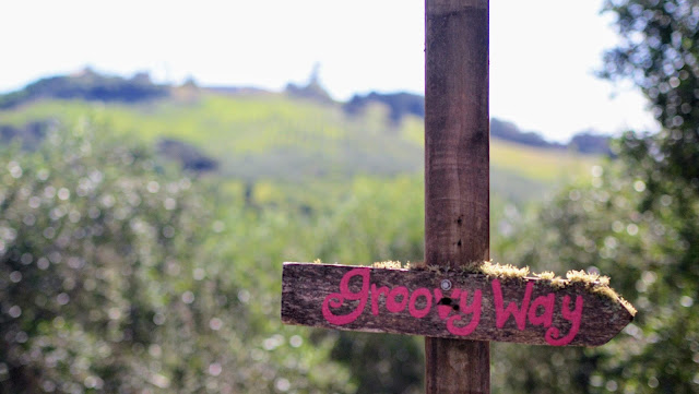 Groovy Way sign on Waiheke Island near Auckland New Zealand
