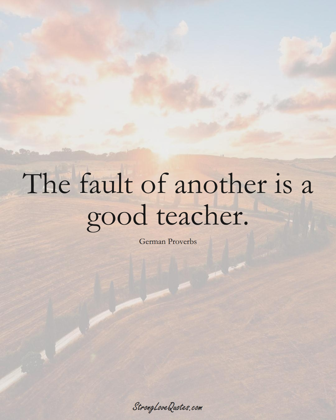 The fault of another is a good teacher. (German Sayings);  #EuropeanSayings