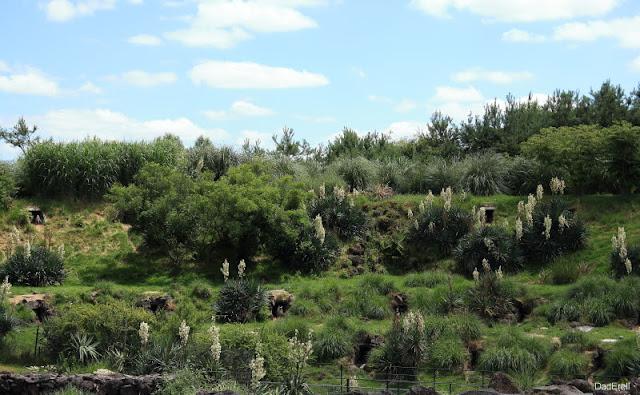 Paysage, Parc des oiseaux de Villars-les-Dombes
