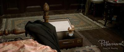 Newt entra in valigia