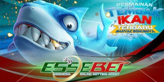 Agen ikan online