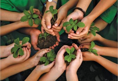 पर्यावरण शिक्षा