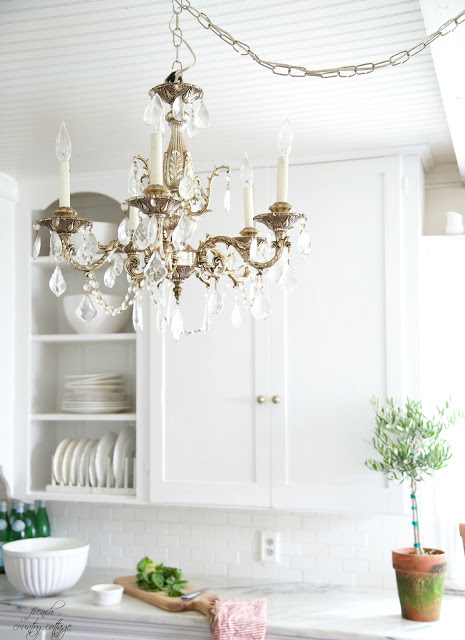 Chandelier and topiary in kitchen