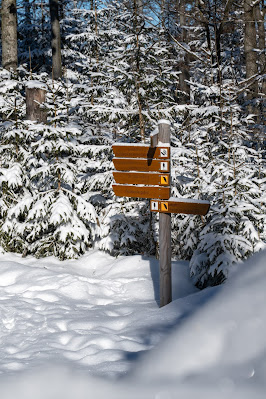 Rundweg Felswandergebiet  Wandern im Nationalpark Bayerischer Wald 17