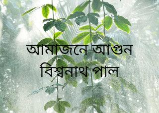 biswanath pal