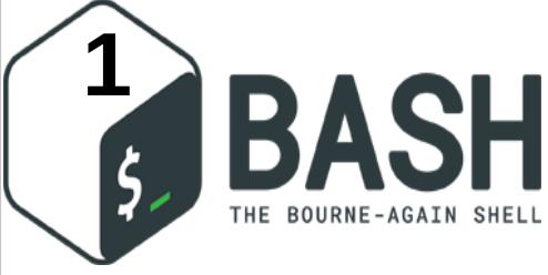 ما هو Bash Shell Scripting ؟ [1]