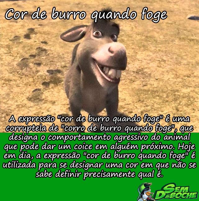 COR DE BURRO QUANDO FOGE