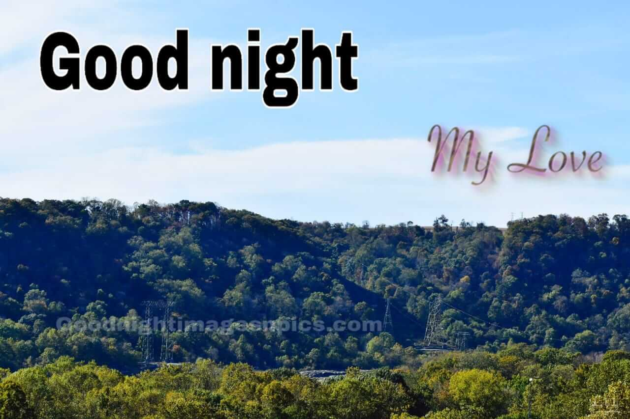 Lovely Images Of Good Night To Download