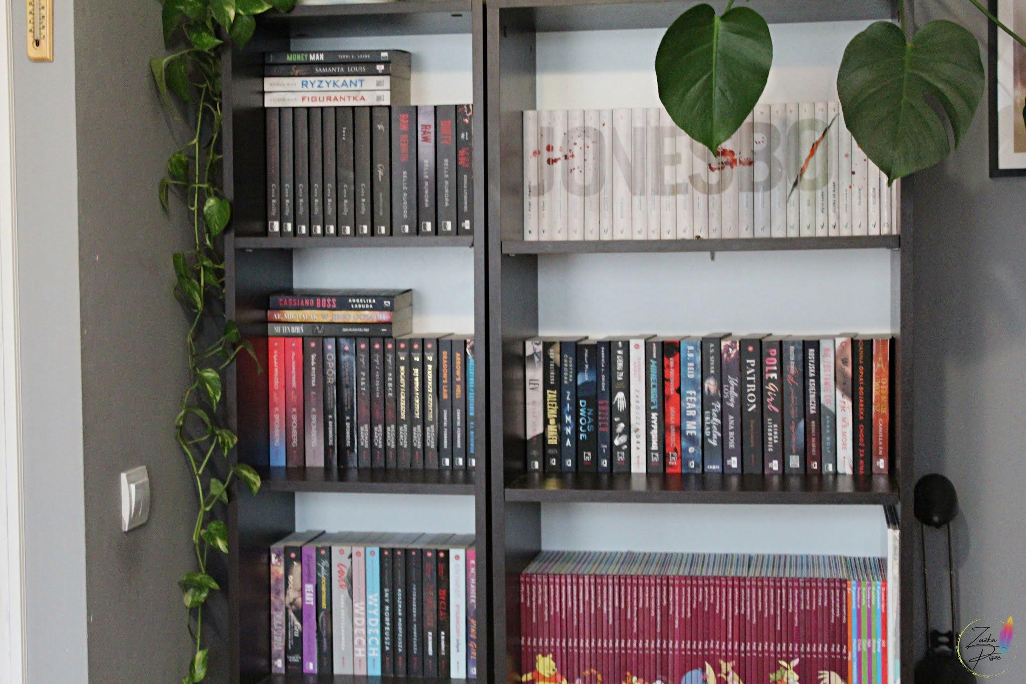 Jak znaleźć miejsce na książki w małym mieszkaniu?
