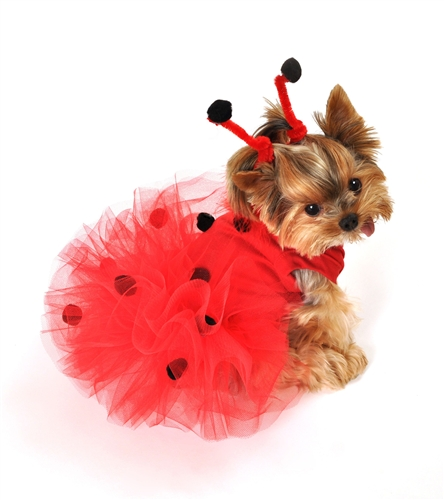 Lady Bug Costume Dog Tutu