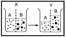 Contoh Soal Uraian USBN Biologi